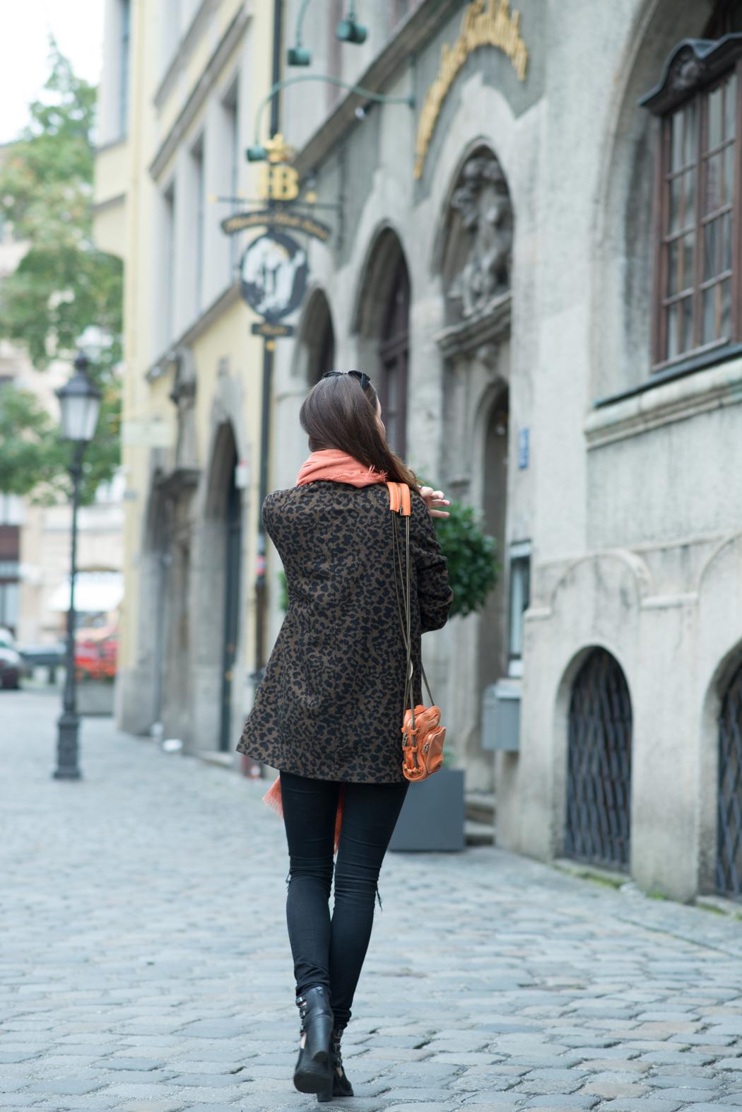 Münchner-Fashionblog-Alexander-Wang-Bag-Leomantel-3