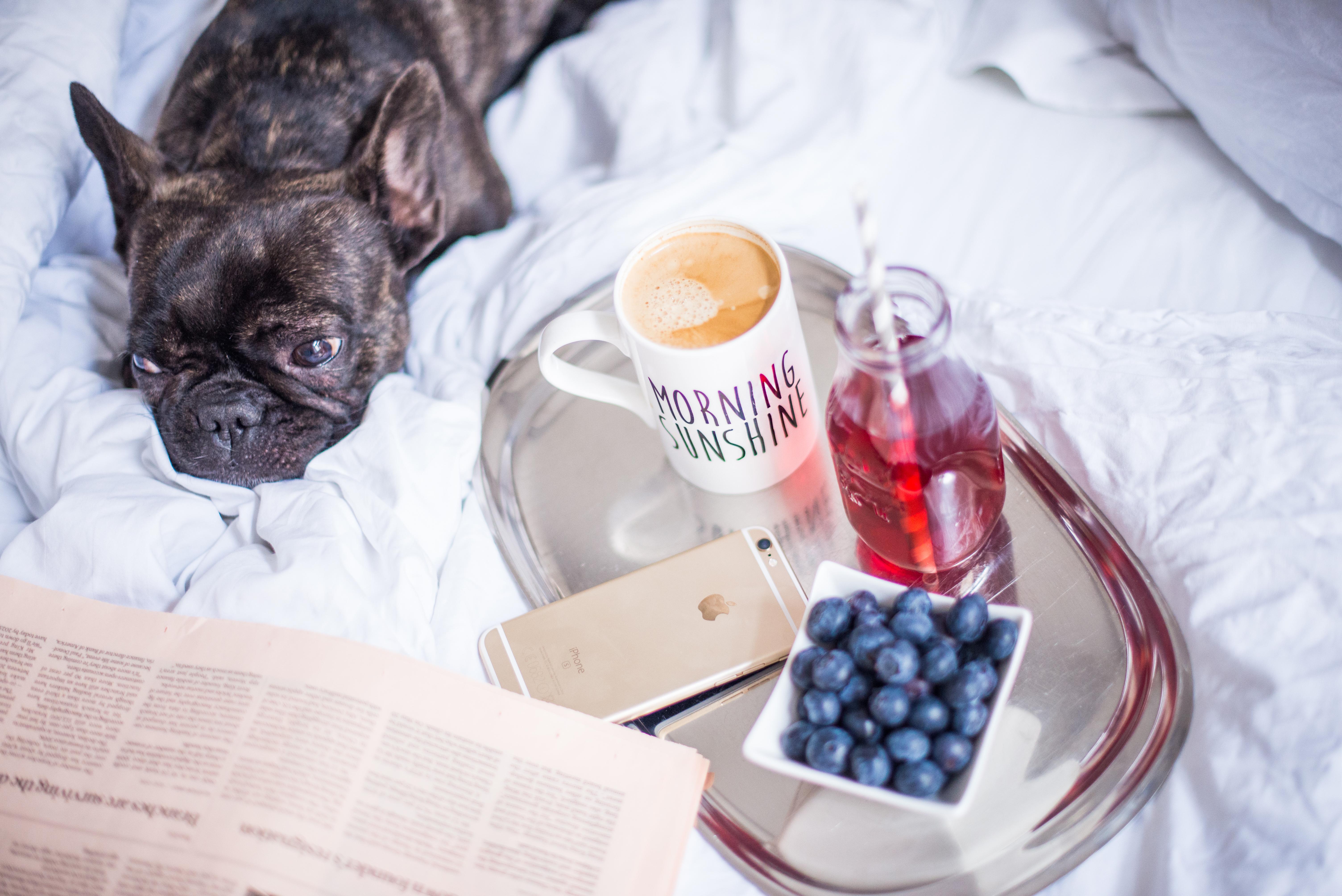 Lifestyleblog-Lifestyleblogger-Lifestyle-Blog-Blogger-Muenchen-Deutschland-Lindarella-Nespresso-Lungo-3