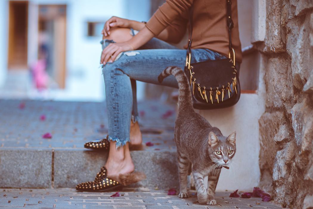 fashionblog-fashionblogger-fashion-blog-blogger-gucci-mules-chloe-hudson-lindarella-8-web