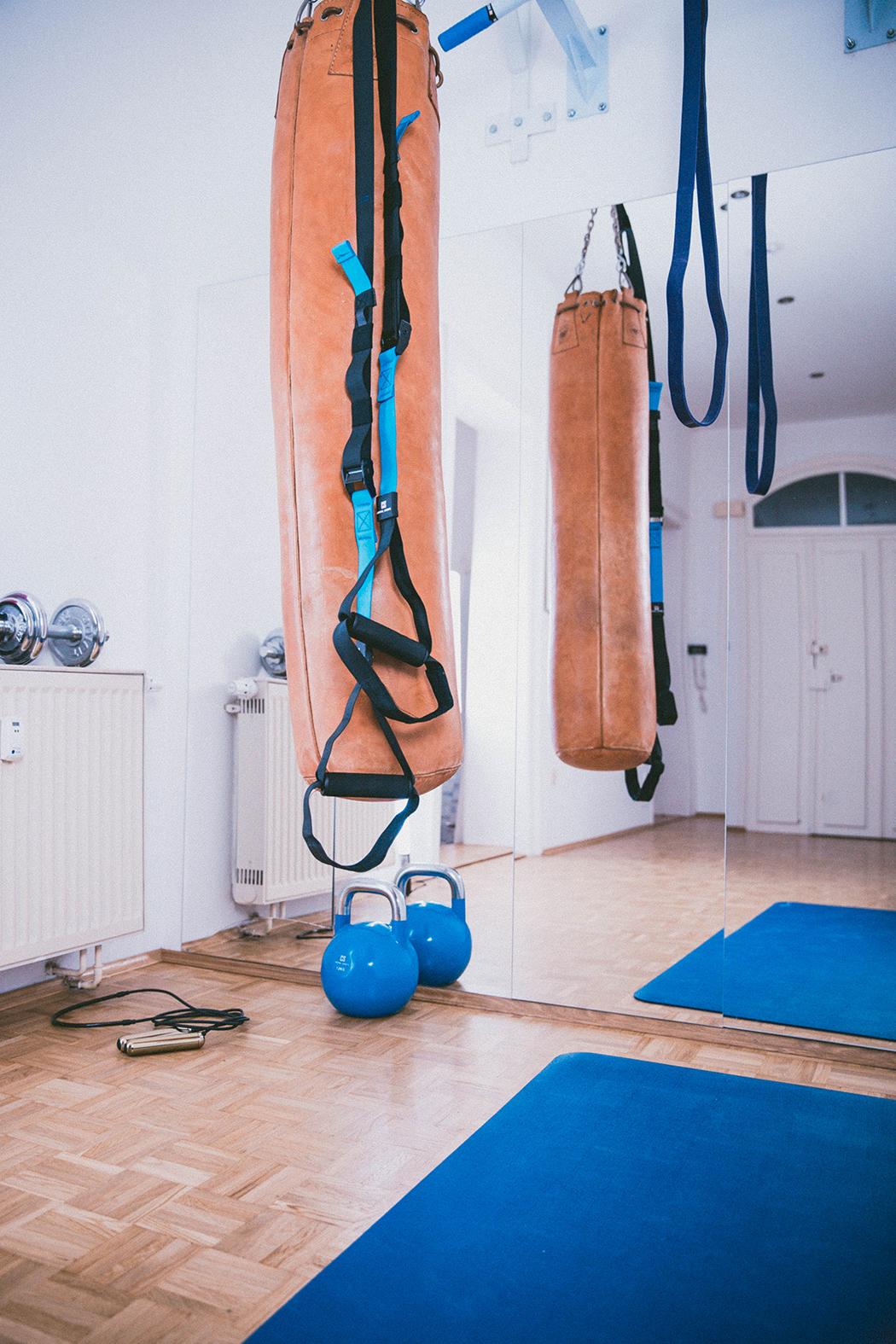 Fitnessblog-Fitnessblogger-Fitness-Blog-Blogger-Muenchen-Deutschland-Captial-Sports-Homegym-Lindarella-12-web
