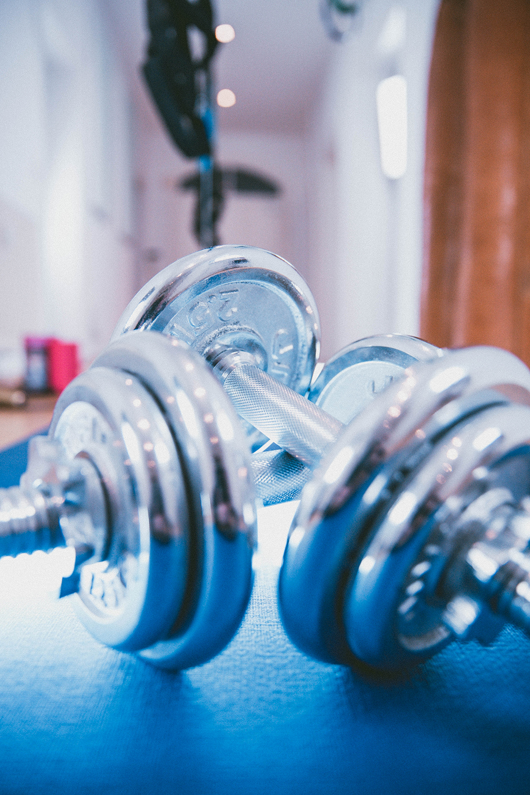 Fitnessblog-Fitnessblogger-Fitness-Blog-Blogger-Muenchen-Deutschland-Captial-Sports-Homegym-Lindarella-21-web