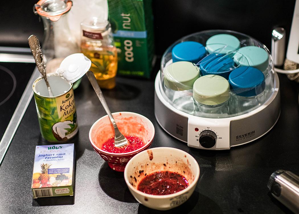 Foodblog-Foodblogger-Food-Blog-Blogger-Muenchen-Deutschland-Lindarella-Yoghurt-Eis-Kokoseis-selber-machen-10